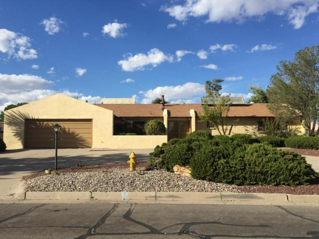 3607 Torrey Pines Road SE, Rio Rancho, NM 87124 (MLS #904526) :: Campbell & Campbell Real Estate Services