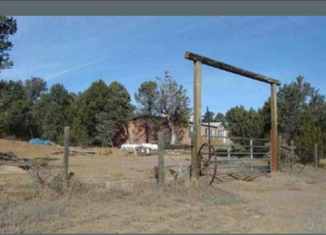 162 Jesse James Road, Edgewood, NM 87015 (MLS #904546) :: Campbell & Campbell Real Estate Services