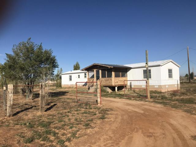 65 High Mesa Road, Los Lunas, NM 87031 (MLS #904988) :: Campbell & Campbell Real Estate Services