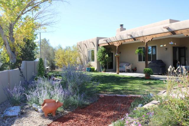 1008 Calle De Celina, Corrales, NM 87048 (MLS #905523) :: Campbell & Campbell Real Estate Services