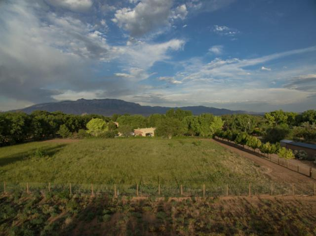 0 Tayne Lane, Corrales, NM 87048 (MLS #905584) :: Campbell & Campbell Real Estate Services