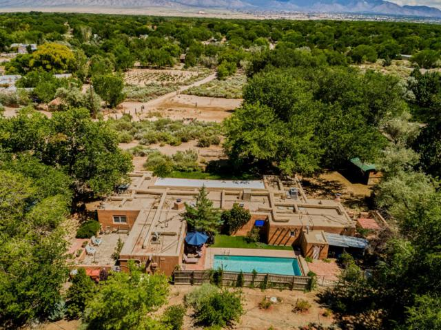 10 Coyote Trail, Corrales, NM 87048 (MLS #905772) :: Campbell & Campbell Real Estate Services
