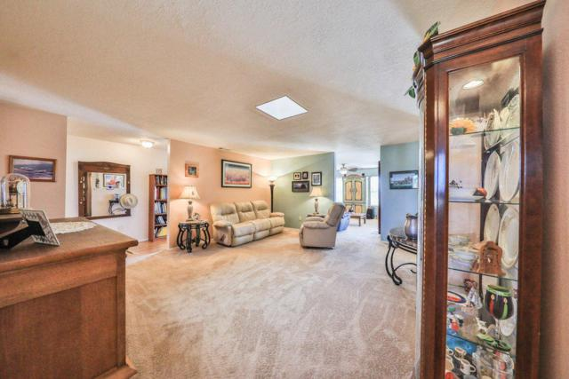 13 Fence Post Drive, Moriarty, NM 87035 (MLS #905826) :: Campbell & Campbell Real Estate Services