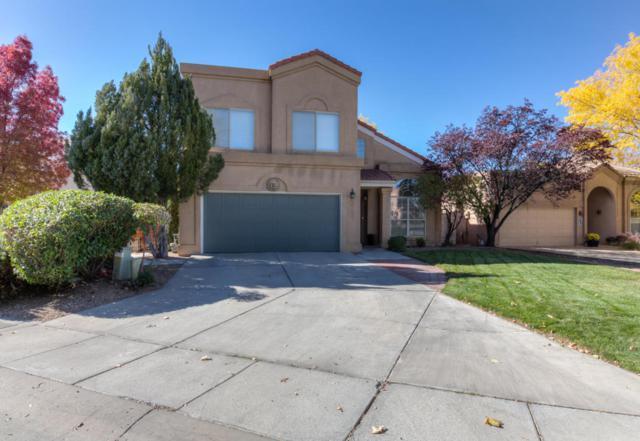 6629 Cypress Point Way NE, Albuquerque, NM 87111 (MLS #905846) :: Rickert Property Group