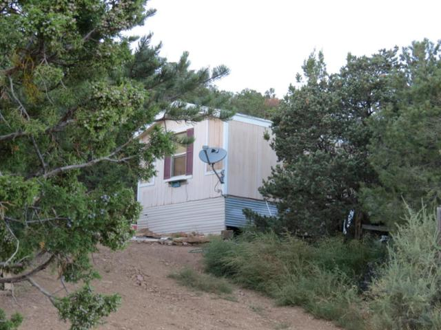 257 Gutierrez Canyon Road, Tijeras, NM 87059 (MLS #905886) :: Campbell & Campbell Real Estate Services