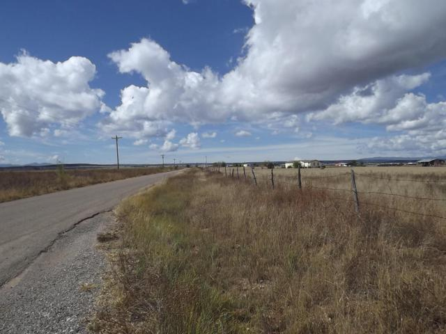 Pumpkin Patch Road, Moriarty, NM 87035 (MLS #905887) :: Silesha & Company