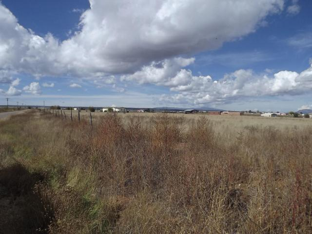 Pumpkin Patch Road, Moriarty, NM 87035 (MLS #905889) :: Silesha & Company