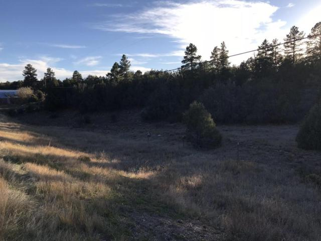 10371 New Mexico 337, Tijeras, NM 87059 (MLS #905941) :: Campbell & Campbell Real Estate Services