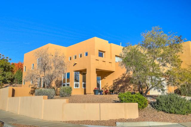 13201 Pine Forest Place NE, Albuquerque, NM 87111 (MLS #905950) :: Rickert Property Group