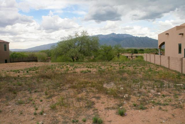 Nicholas Court, Bernalillo, NM 87004 (MLS #905976) :: Campbell & Campbell Real Estate Services