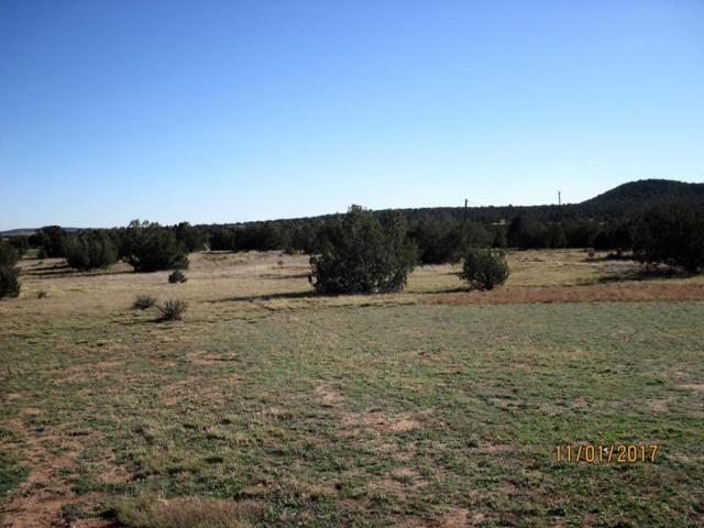 5 Cedar Hill Lane, Moriarty, NM 87035 (MLS #905996) :: Campbell & Campbell Real Estate Services