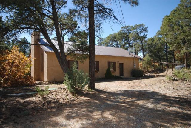 16 Bobolink Lane, Tijeras, NM 87059 (MLS #906071) :: Campbell & Campbell Real Estate Services