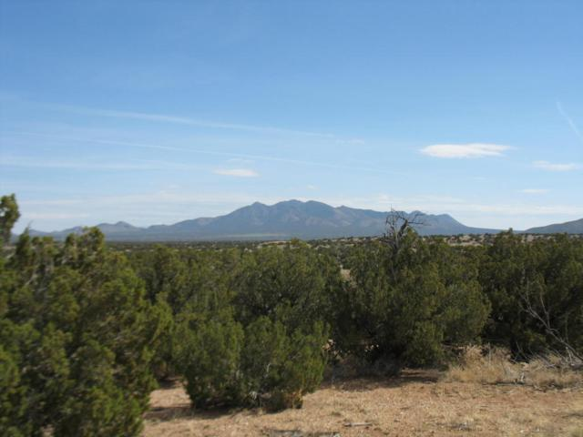 LOT 92 Turquoise Drive, Sandia Park, NM 87047 (MLS #906096) :: Campbell & Campbell Real Estate Services