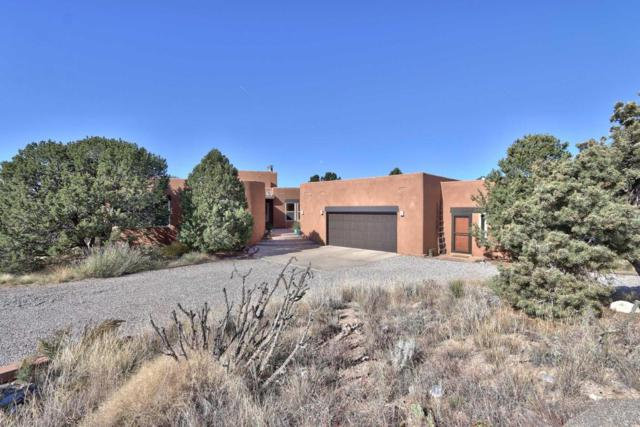 1129 Marigold Drive NE, Albuquerque, NM 87122 (MLS #906106) :: Your Casa Team