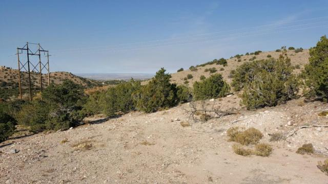 Camino De La Rosa Castillo, Placitas, NM 87043 (MLS #906150) :: Campbell & Campbell Real Estate Services