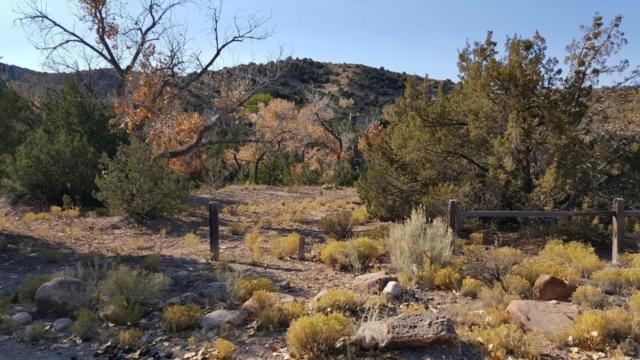 Camino De La Rosa Castillo, Placitas, NM 87043 (MLS #906160) :: Campbell & Campbell Real Estate Services