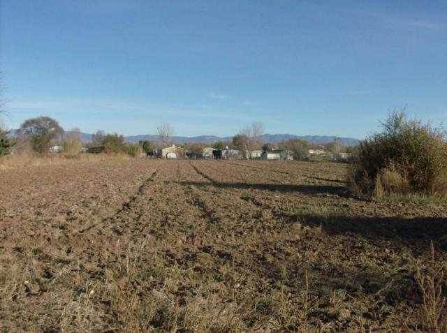 1700 Los Lentes Road, Los Lunas, NM 87031 (MLS #906171) :: The Bigelow Team / Realty One of New Mexico