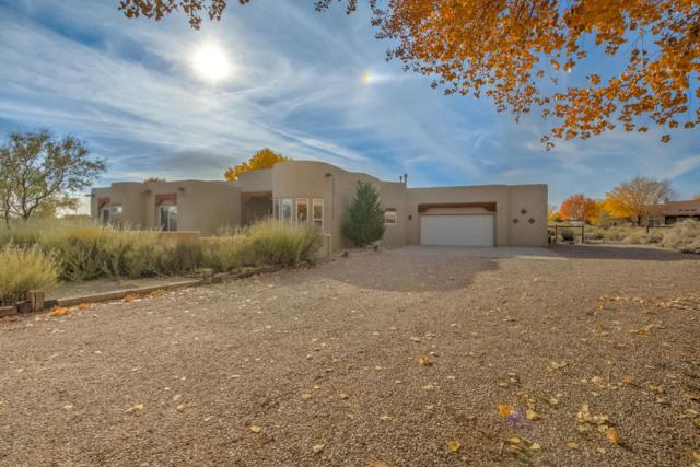 113 Doolittle Road, Corrales, NM 87048 (MLS #906177) :: Campbell & Campbell Real Estate Services