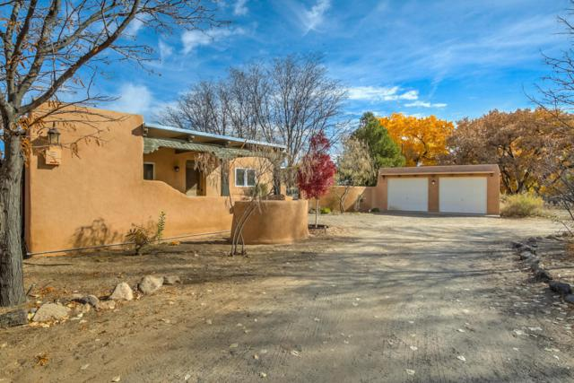 726 Meadowlark Lane, Corrales, NM 87048 (MLS #906218) :: Campbell & Campbell Real Estate Services