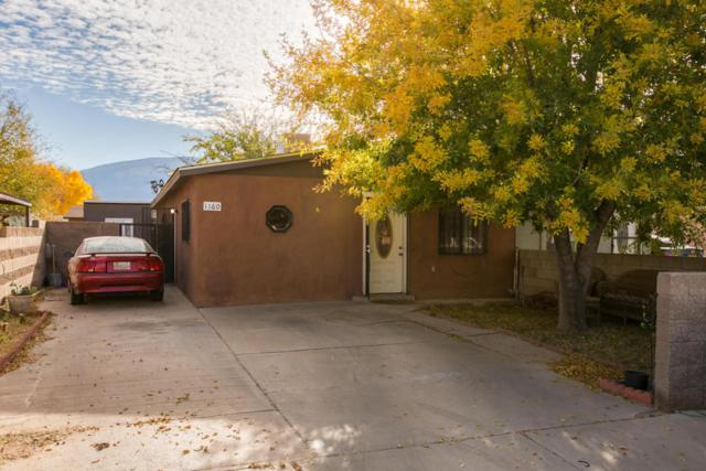 1160 Calle Mesquite, Bernalillo, NM 87004 (MLS #906273) :: Campbell & Campbell Real Estate Services