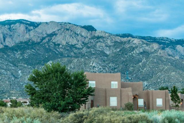 11805 Signal Avenue NE, Albuquerque, NM 87122 (MLS #906278) :: Your Casa Team