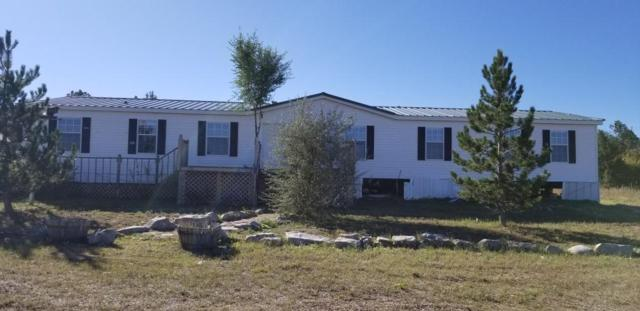 94 Bearcat Road, Tijeras, NM 87059 (MLS #906308) :: Campbell & Campbell Real Estate Services