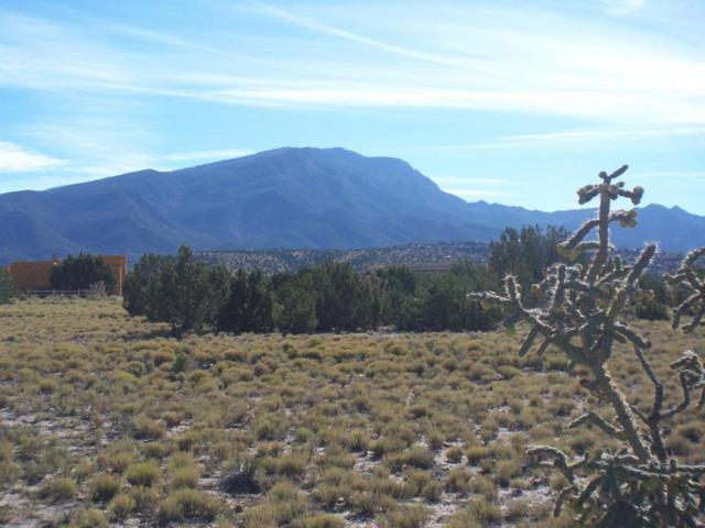 Cielo Norte, Placitas, NM 87043 (MLS #906334) :: Your Casa Team