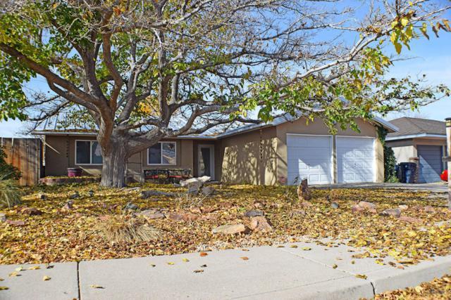 2409 Zena Lona Street NE, Albuquerque, NM 87112 (MLS #906374) :: Your Casa Team