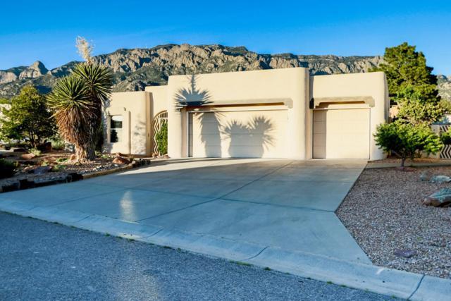 8231 Raintree Drive NE, Albuquerque, NM 87122 (MLS #906399) :: Your Casa Team