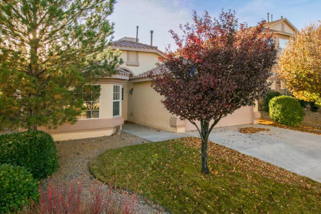 690 Brook Meadows Drive NE, Rio Rancho, NM 87144 (MLS #906518) :: Your Casa Team