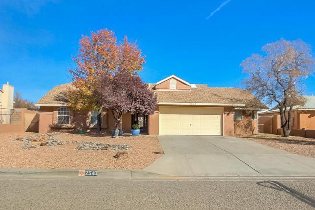 2540 Twin Buttes NE, Rio Rancho, NM 87144 (MLS #906520) :: Your Casa Team
