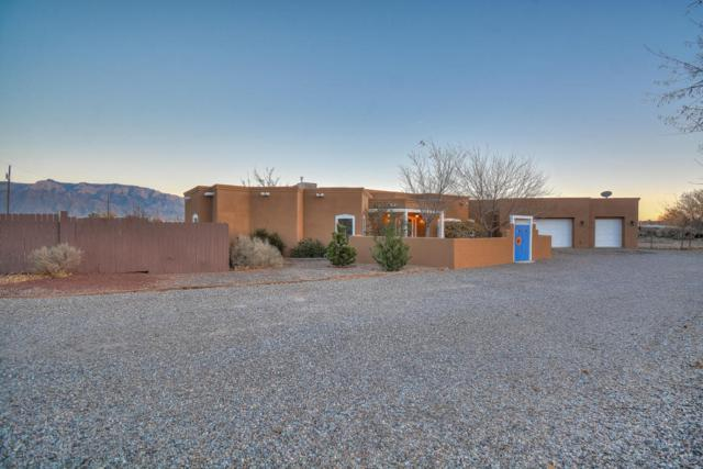 709 Perfecto Lopez Road, Corrales, NM 87048 (MLS #906669) :: Rickert Property Group
