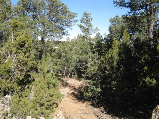 6 Nambe, Sandia Park, NM 87047 (MLS #906678) :: Will Beecher at Keller Williams Realty
