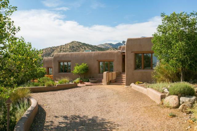 40 Tierra Monte Street NE, Albuquerque, NM 87122 (MLS #906711) :: Your Casa Team