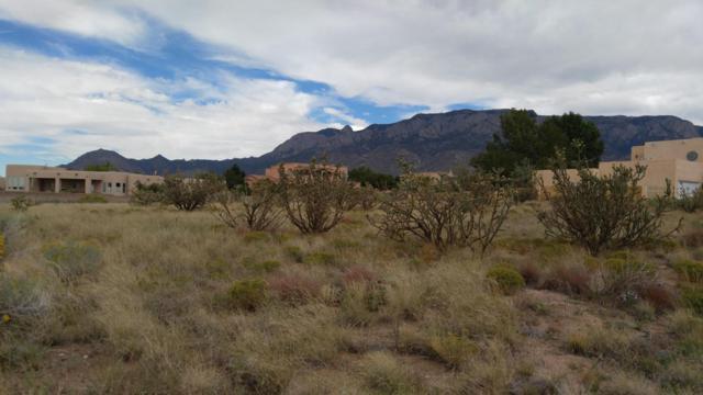 Santa Monica Drive NE, Albuquerque, NM 87122 (MLS #906746) :: Your Casa Team