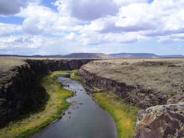 Rio Grande Gorge Ranch, Costilla, NM 87524 (MLS #906786) :: Campbell & Campbell Real Estate Services