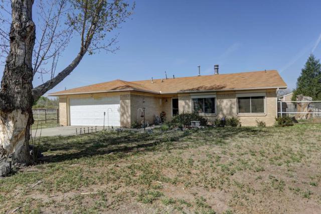 875 Velvet Drive, Bosque Farms, NM 87068 (MLS #906790) :: Rickert Property Group