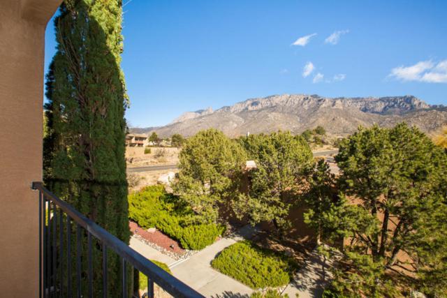 810 Live Oak Road NE Apt C, Albuquerque, NM 87122 (MLS #906791) :: Your Casa Team