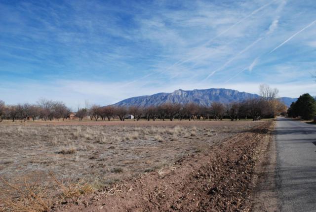 183 Paseo De Dulcelina Road, Corrales, NM 87048 (MLS #906812) :: Will Beecher at Keller Williams Realty
