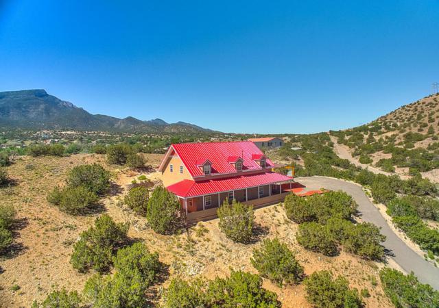 40 Camino De La Buena Vista, Placitas, NM 87043 (MLS #906864) :: Will Beecher at Keller Williams Realty