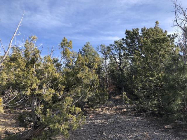 Haven Road, Cedar Crest, NM 87008 (MLS #906869) :: Will Beecher at Keller Williams Realty