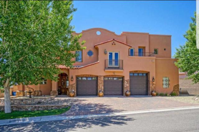 1009 C De Baca Lane, Bernalillo, NM 87004 (MLS #906981) :: Rickert Property Group