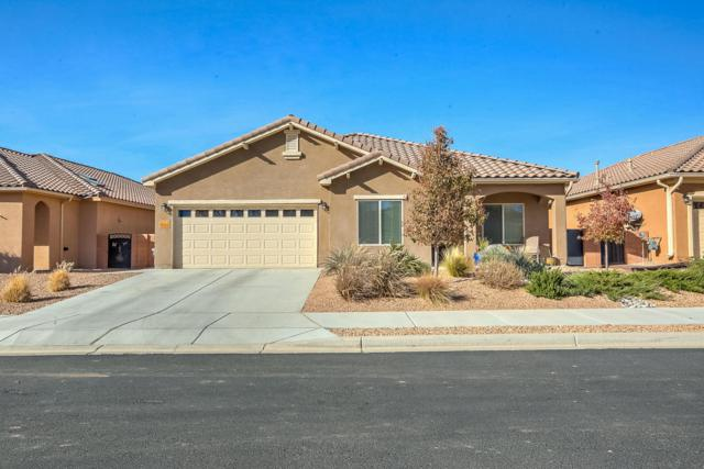 983 Salt Cedar Court, Bernalillo, NM 87004 (MLS #907002) :: Rickert Property Group
