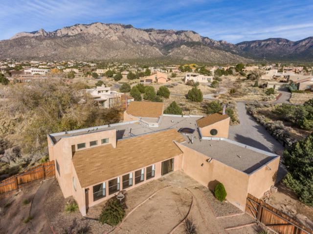 1457 Bluebell Drive NE, Albuquerque, NM 87122 (MLS #907012) :: Your Casa Team