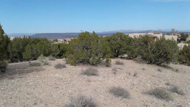 70 Desert Mountain Road, Placitas, NM 87043 (MLS #907028) :: Rickert Property Group