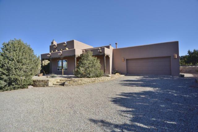 10 Tres Amigos Road, Placitas, NM 87043 (MLS #907092) :: Rickert Property Group