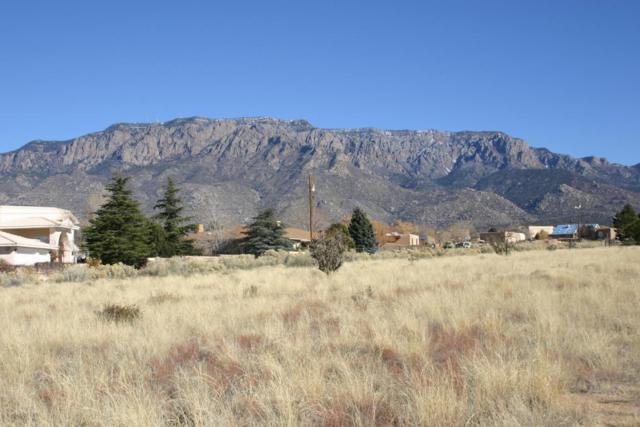 Coronado Avenue NE, Albuquerque, NM 87122 (MLS #907297) :: Your Casa Team