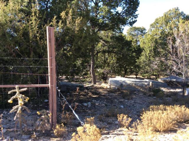 12 Pinon Point, Tijeras, NM 87059 (MLS #907419) :: Will Beecher at Keller Williams Realty