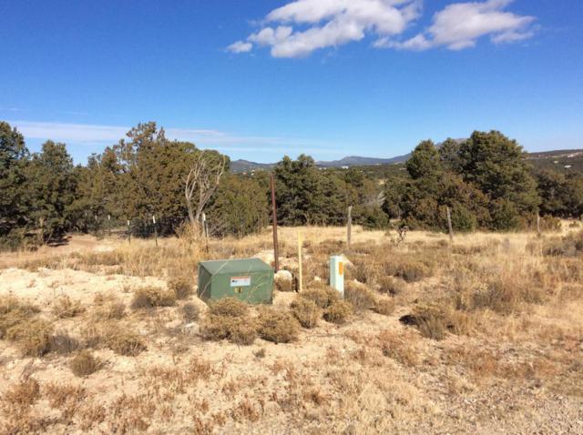 2 Pinon Point SE, Tijeras, NM 87059 (MLS #907420) :: Will Beecher at Keller Williams Realty