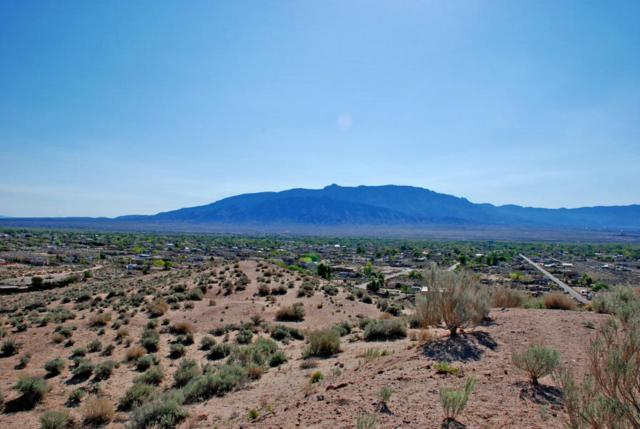 0 Desert Luna, Corrales, NM 87048 (MLS #907601) :: Your Casa Team